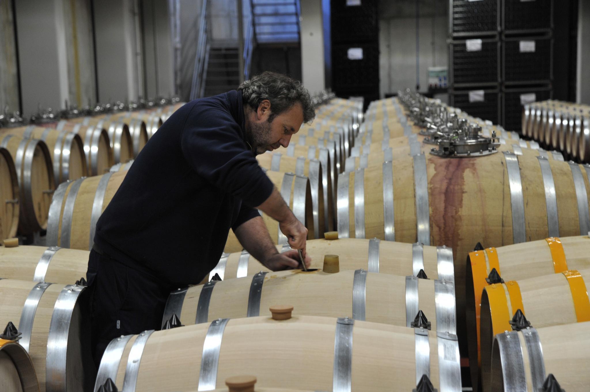 José Luis Ferrer winery