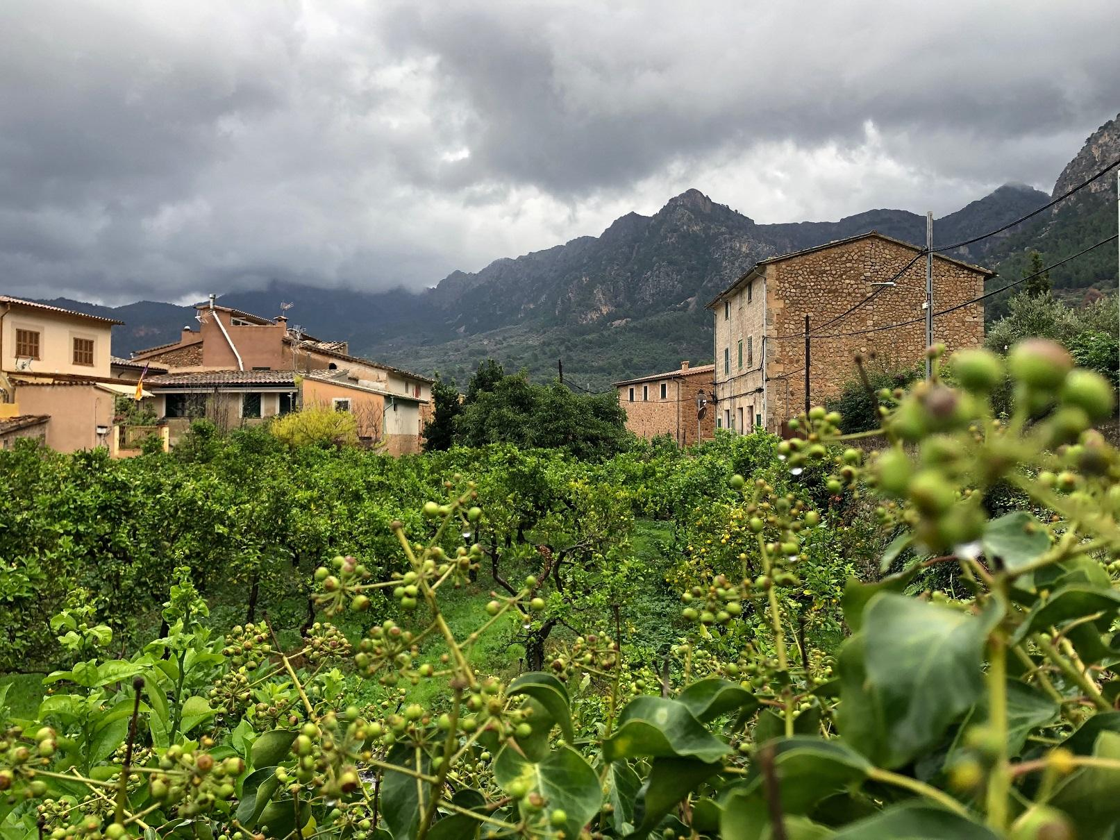 A soggy Soller