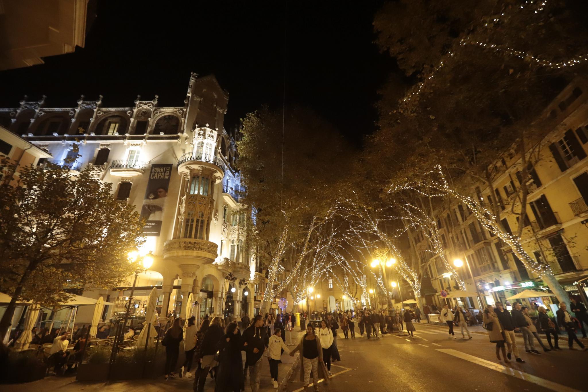 Palma Christmas lights