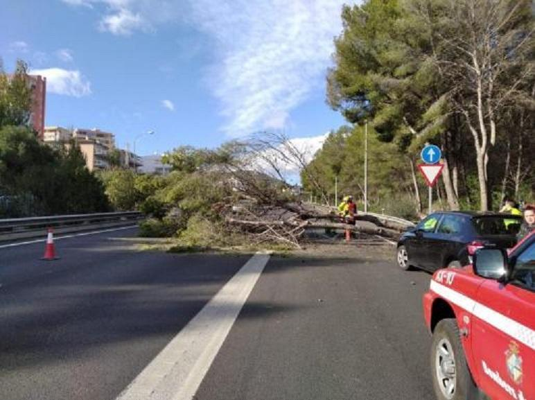 Storm damage Majorca