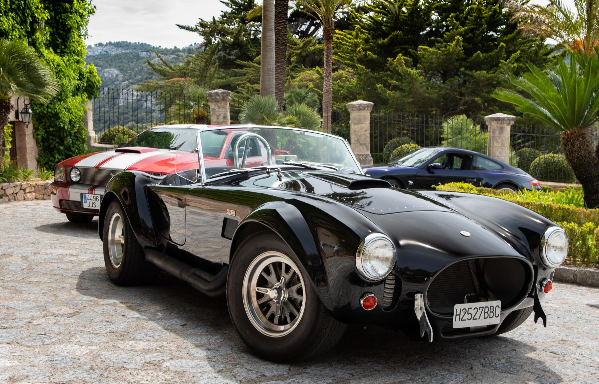 Cobra in good company, out for a Sunday morning run in the Tramuntana