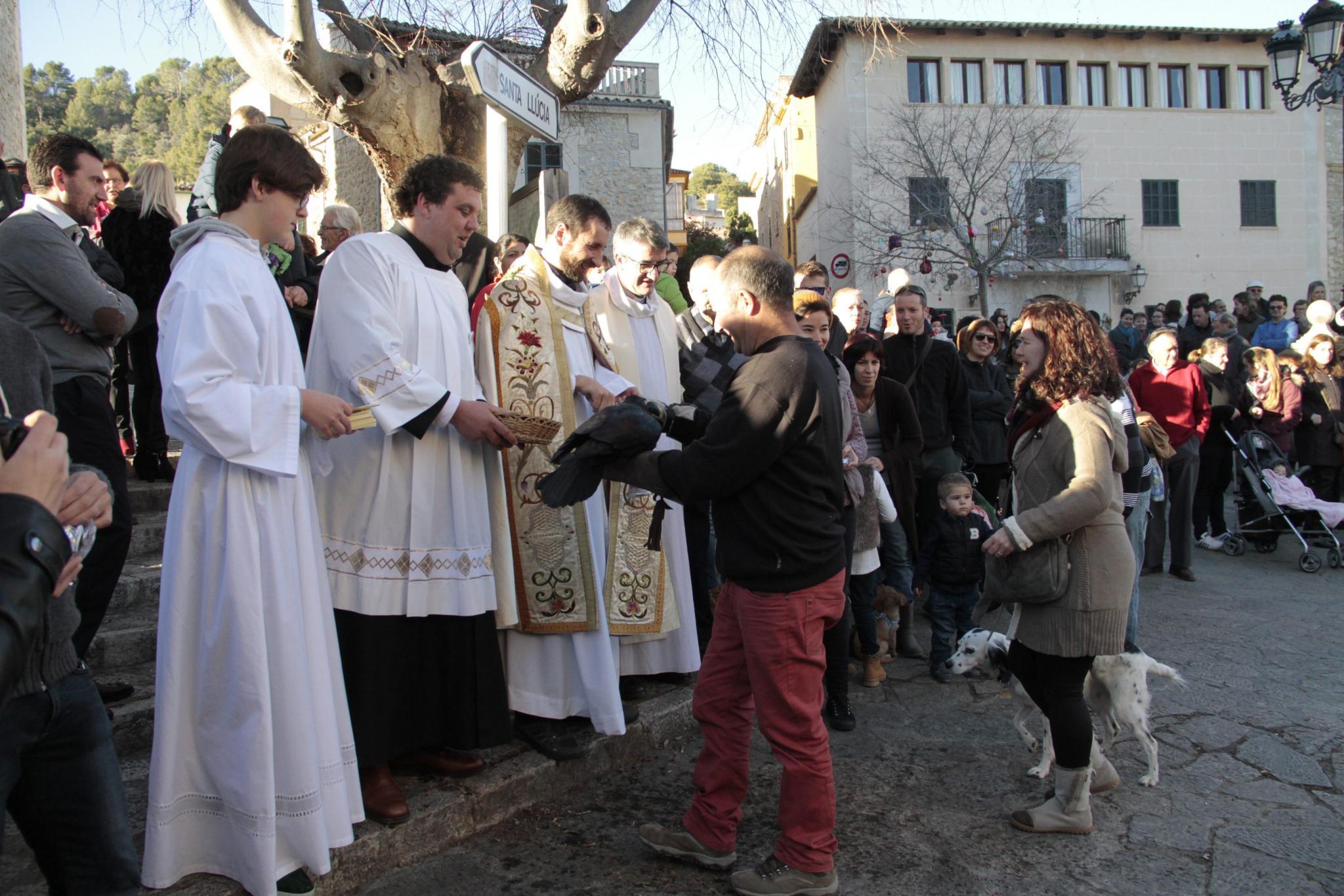 El cuervo ¿Jeroni¿ realiza un vuelo perfecto y lleva el pan a Sant Antoni y Sant Pau.