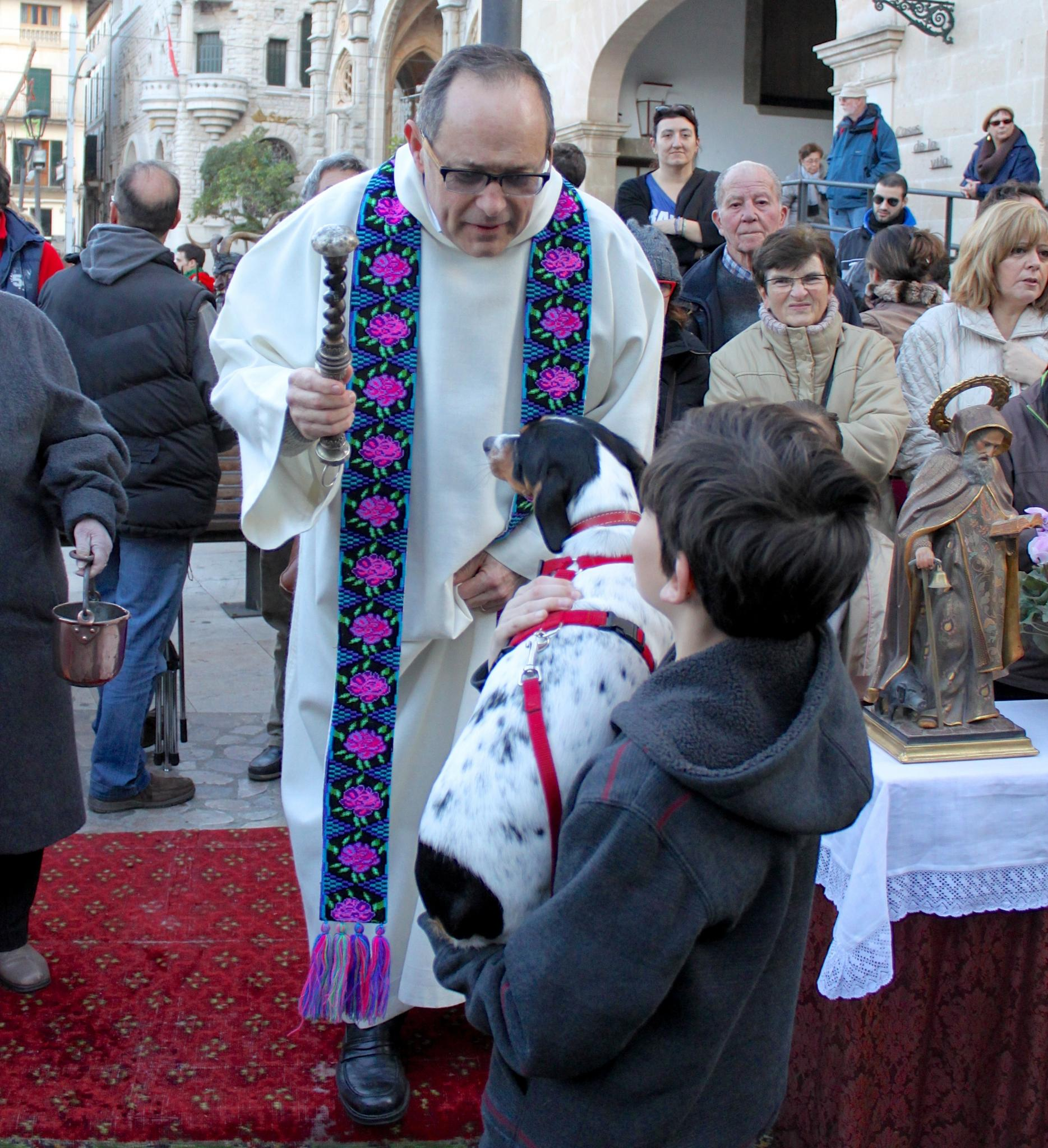 Animal blessings for Sant Antoni