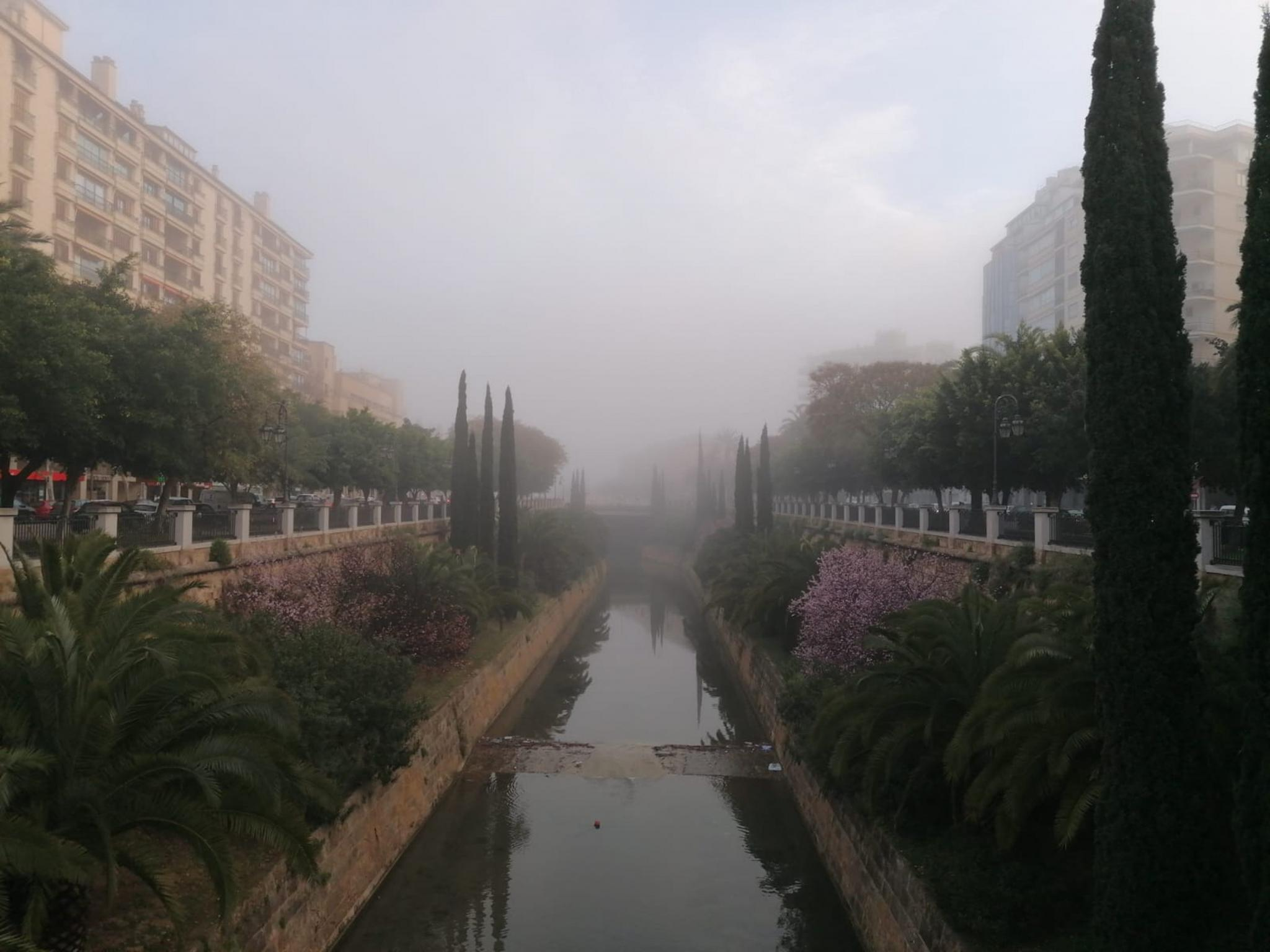 Paseo Mallorca in Palma shrouded in fog.