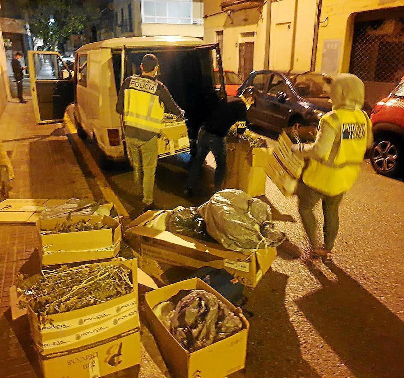 Drug raid in Palma.