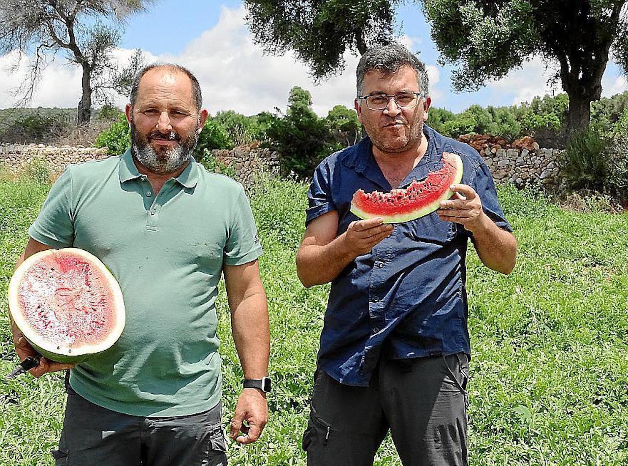 Mateu Pascual & Joan Simonet, Sa Sínia farm, Manacor.
