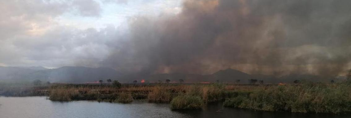 Albufera fire, Majorca.