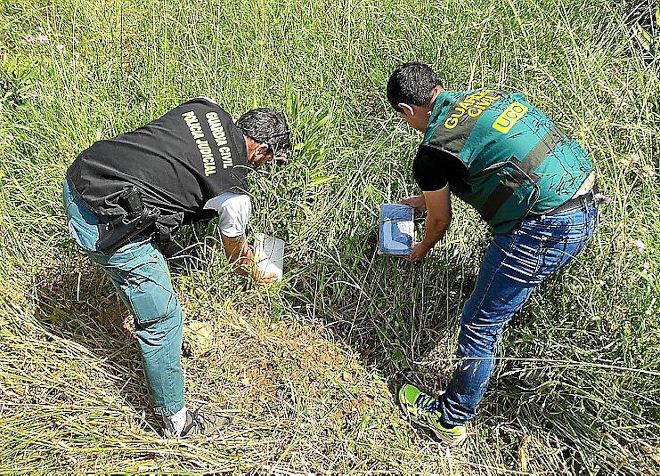 Guardia Civil Officers uncover drugs in field.
