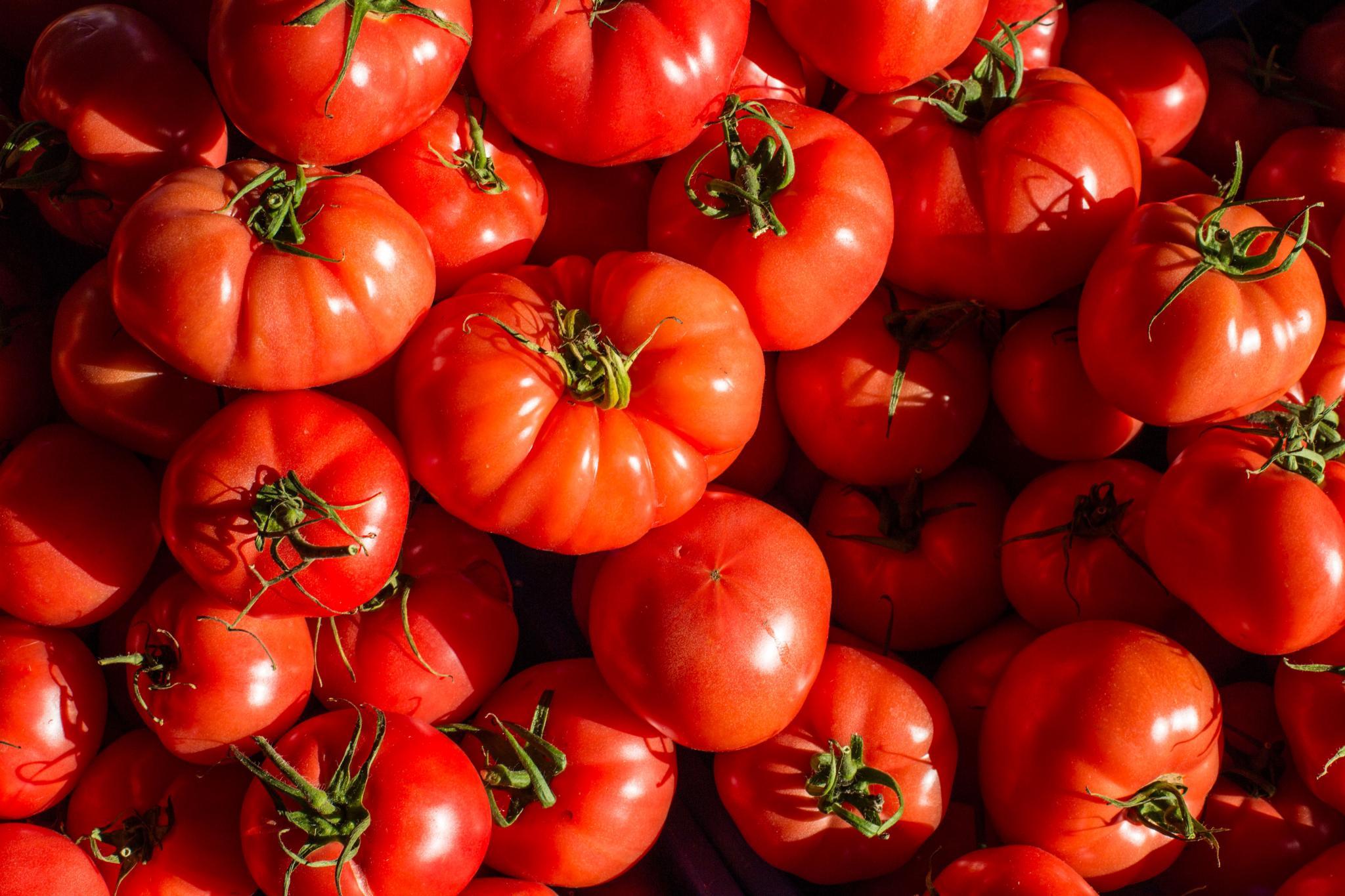 tomates pa amb oli