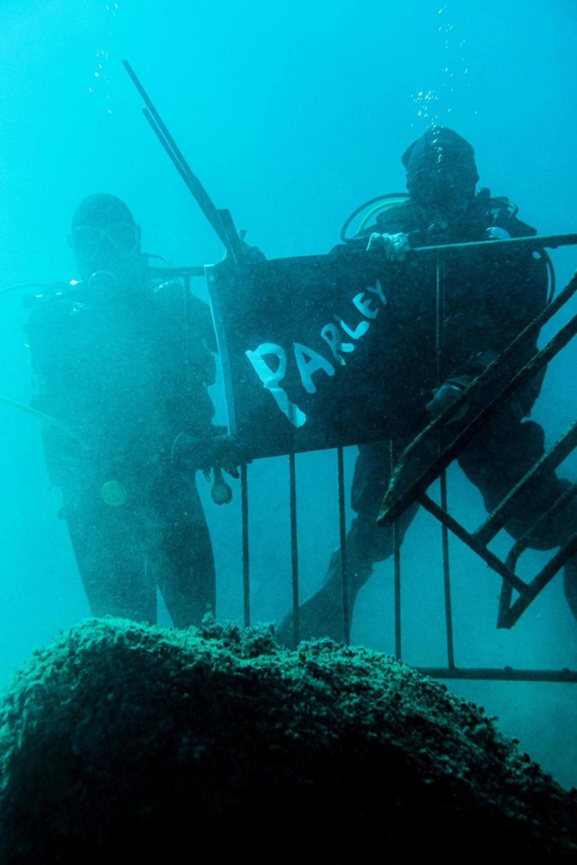 Divers from 'Parley for the Oceans'
