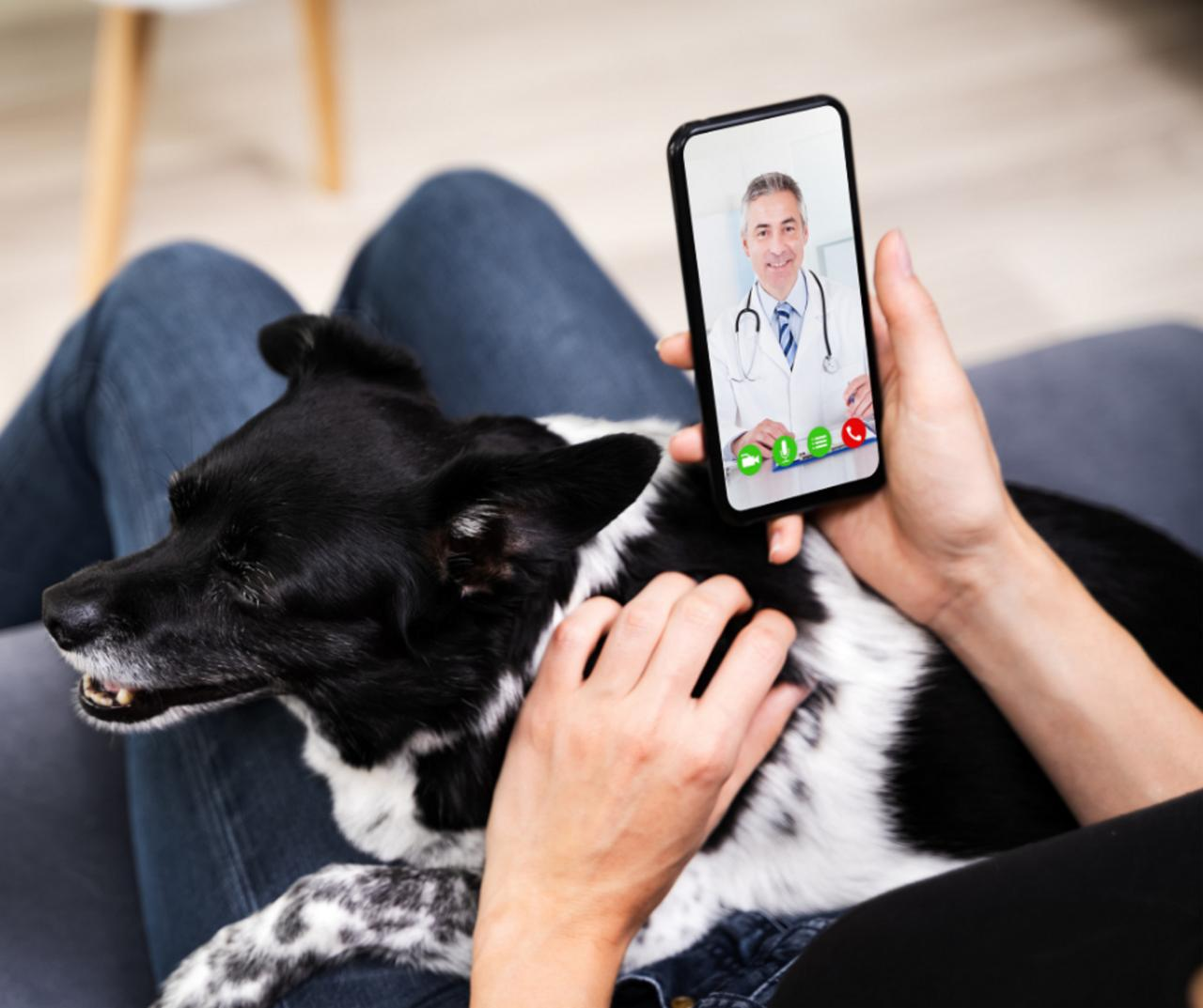 Some insurance companies offer video consultations with doctors
