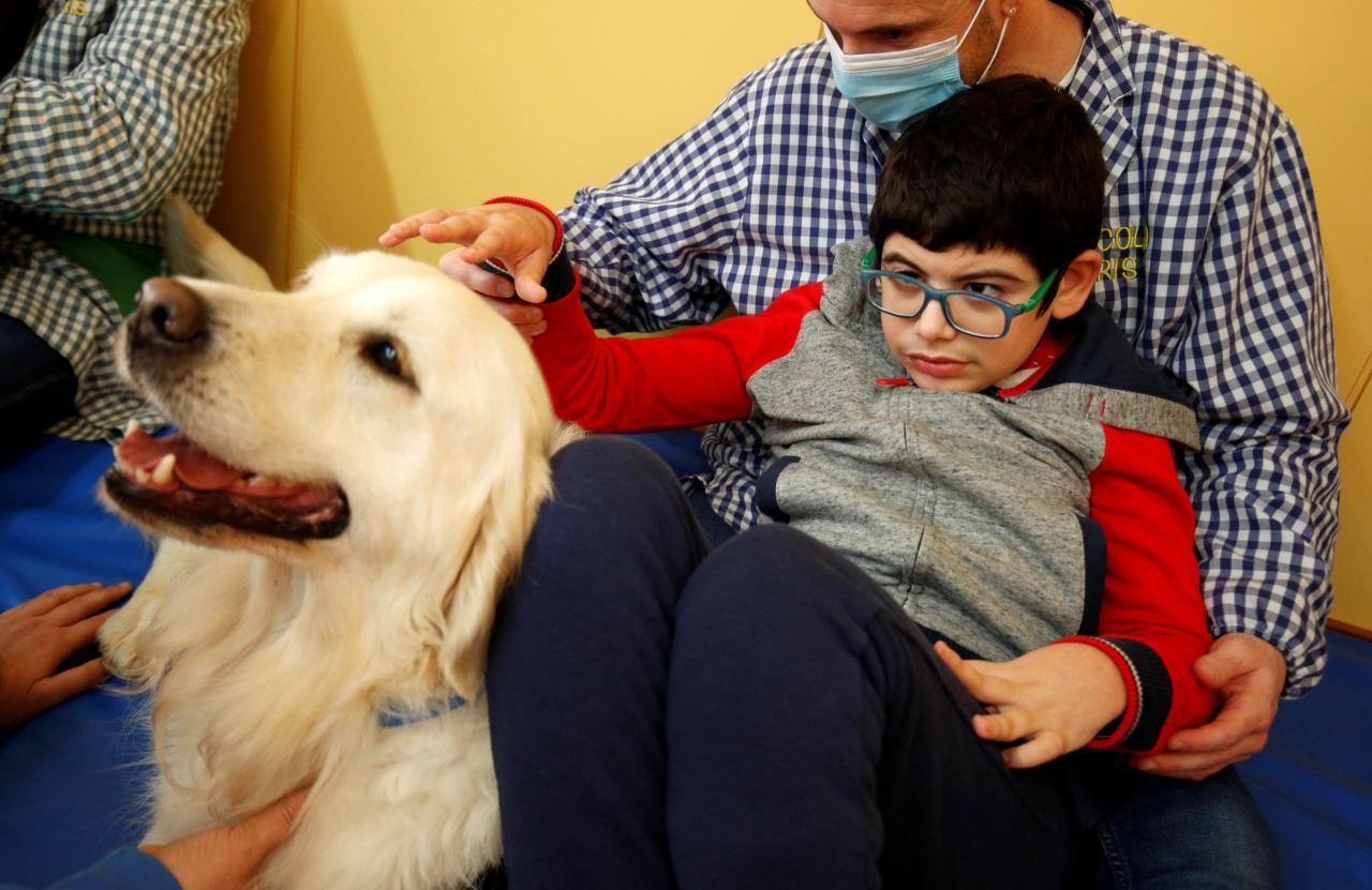 Sesión de terapia asistida por perros en la Escola Iris de Sant Vicenc dels Horts