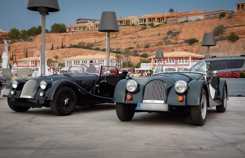 A brace of Morgans in performance garb
