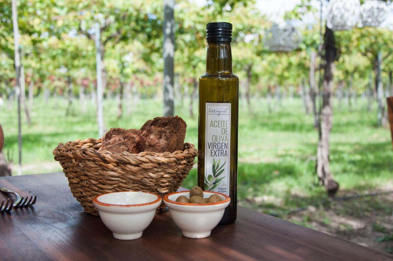 Terragust Olive Oil.