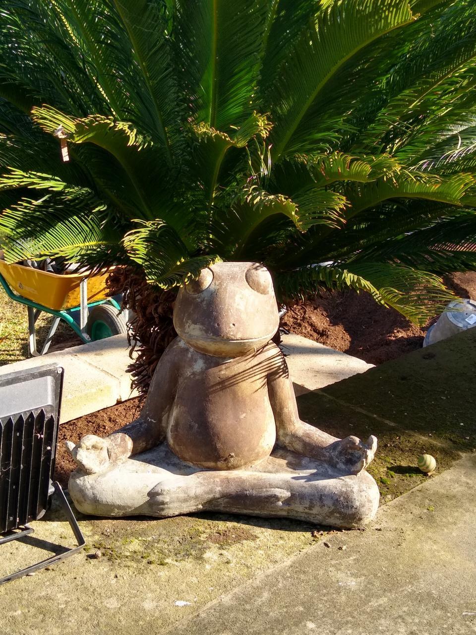 A Meditating Frog statue