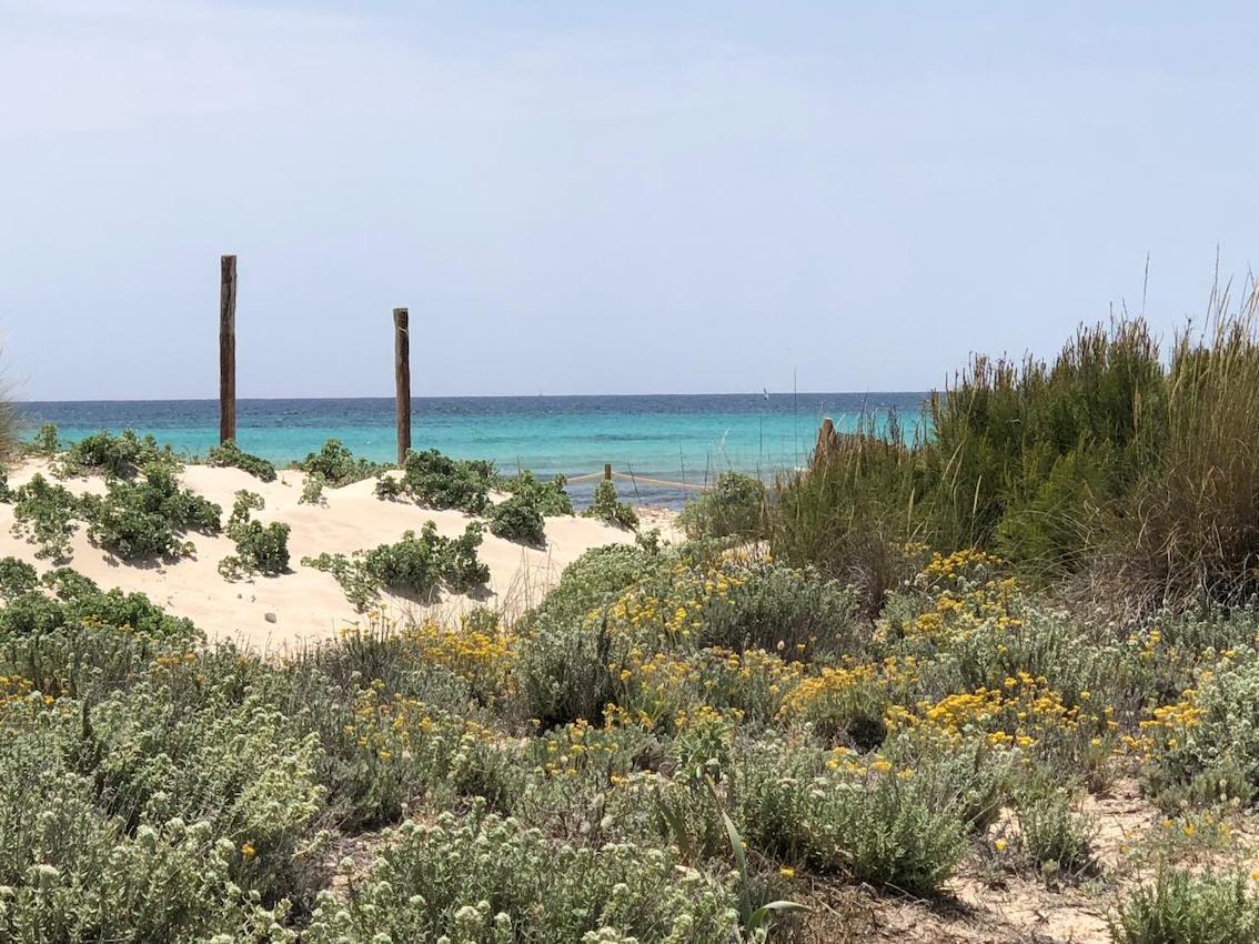 Es Trenc, Mallorca.