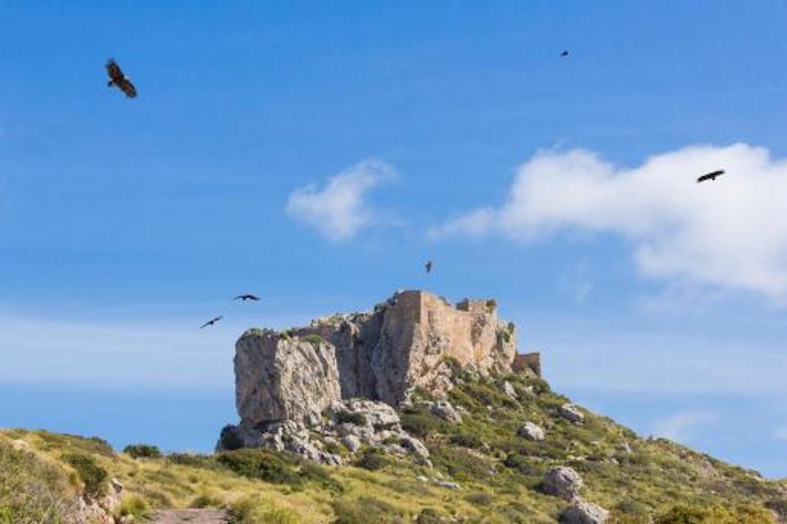 Castell del Rei, Mallorca.