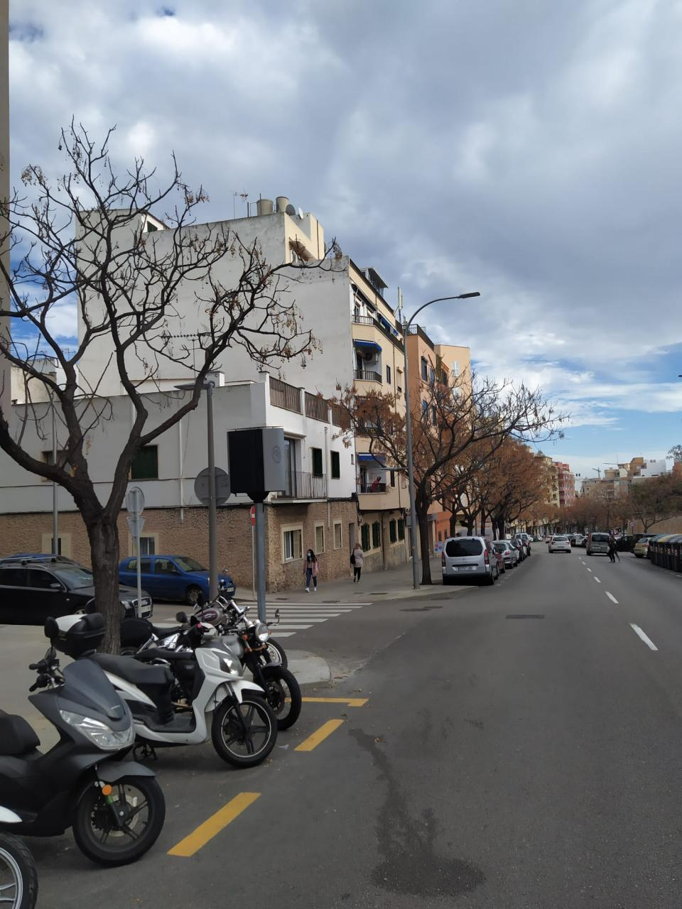 Calle Pascual Ribot 34