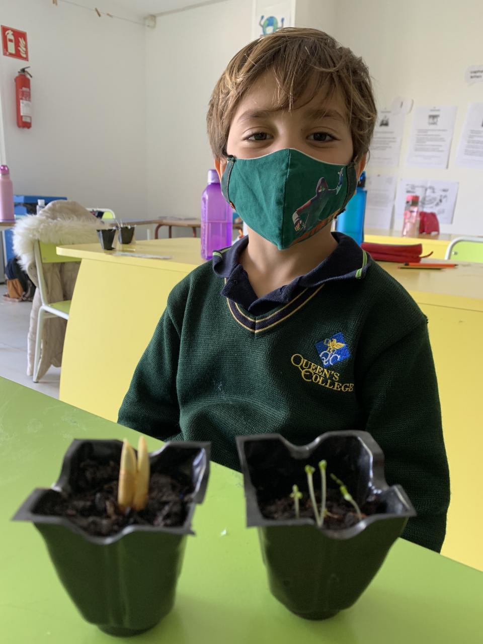 A school garden offers opportunities to teach life skills