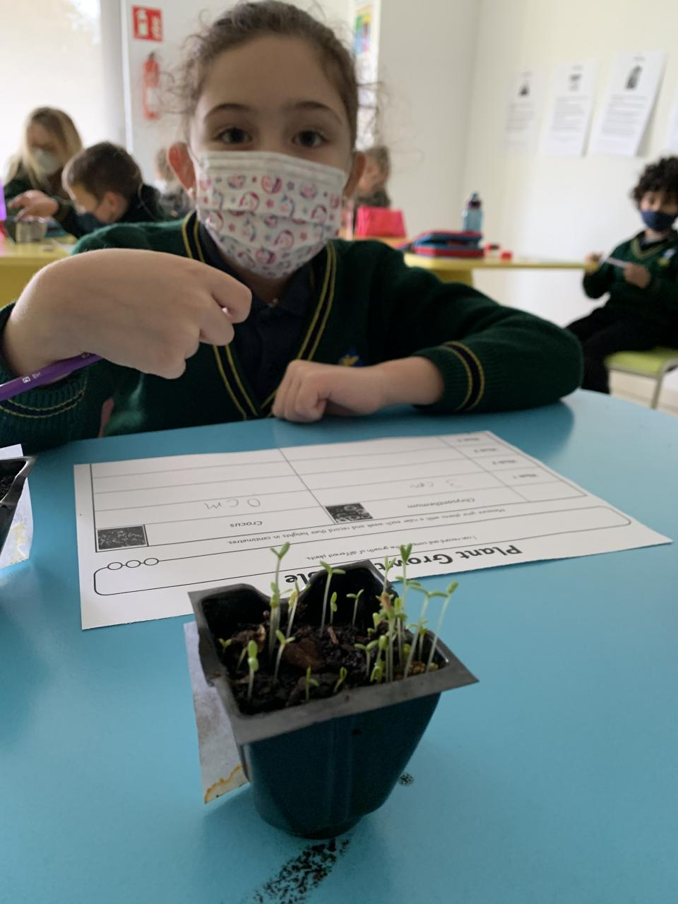 Planting seeds gives the children a purposeful opportunity to work