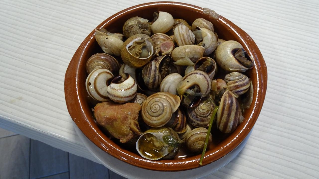 Mallorcan Snails