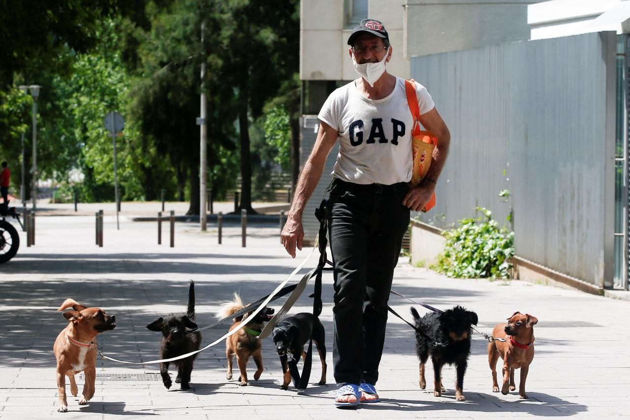 A man walks his dogs in a Barcelona street