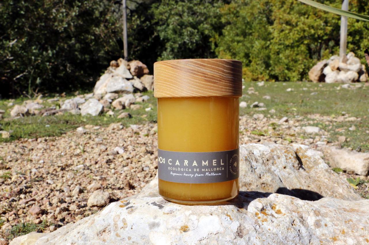 Honey caramel by Marti Mascaro