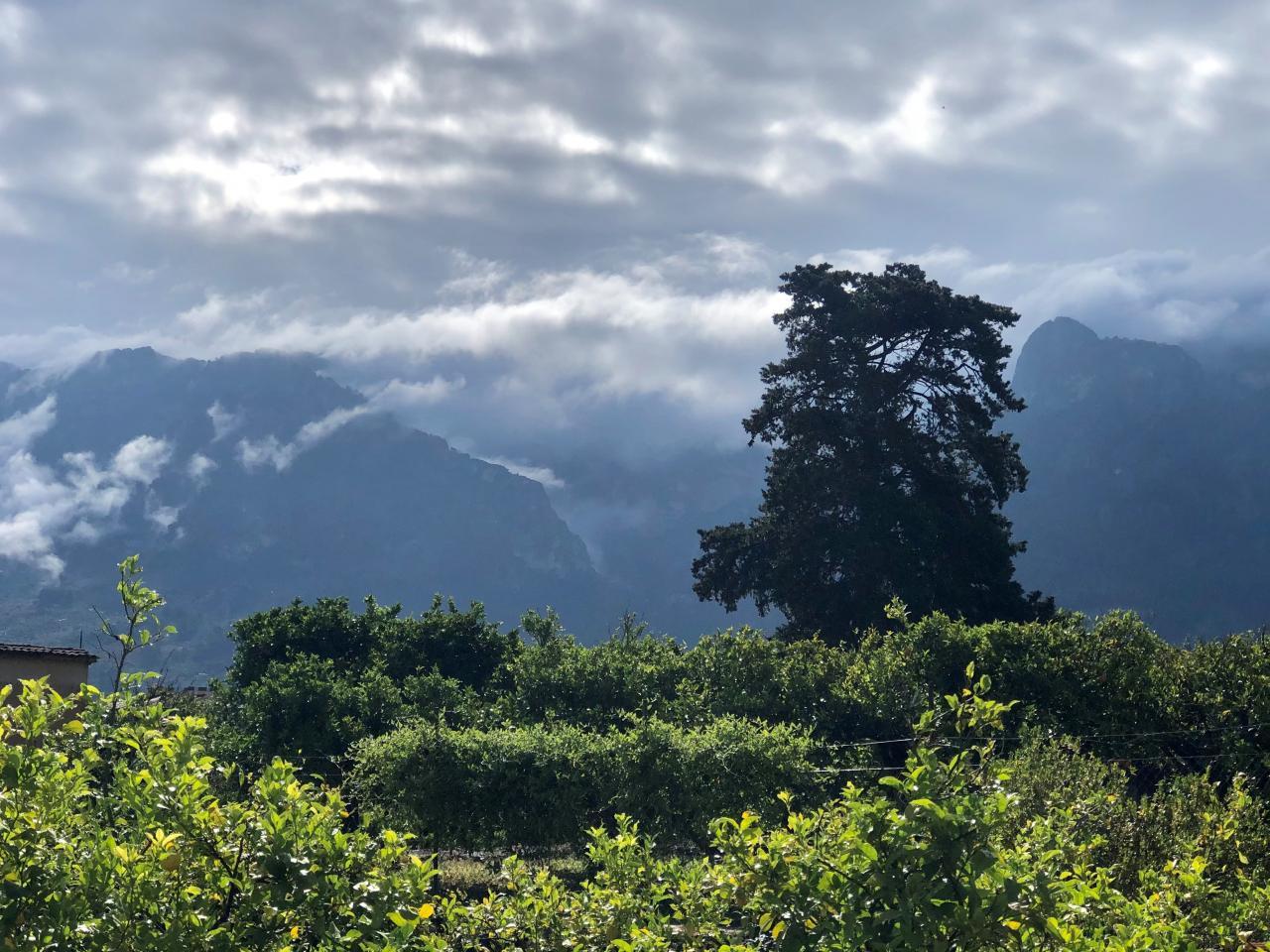 Quiet mountains
