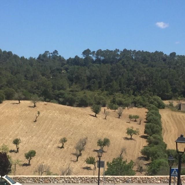 A trip to a bit of 'slow living Mallorca'