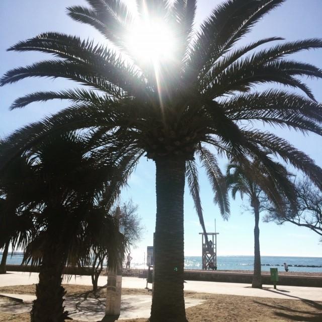 Reminiscent of the Santa Monica sea front in LA