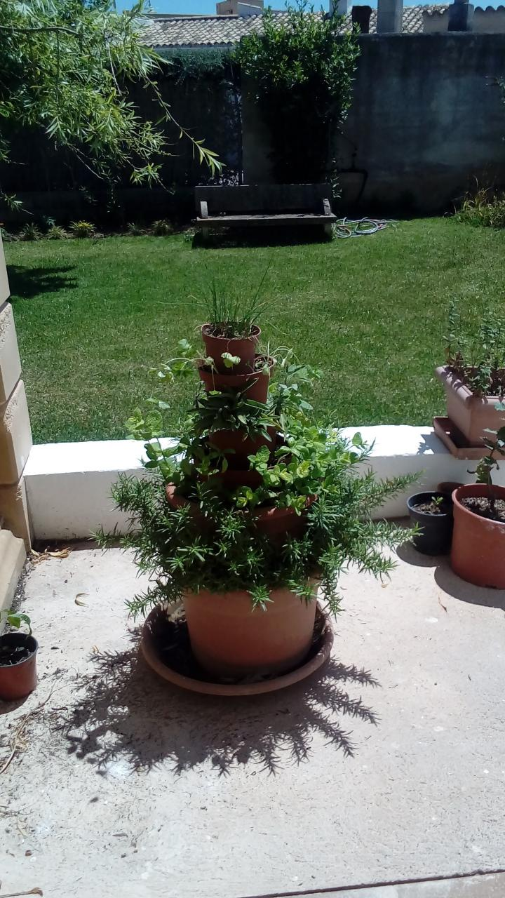 Tower of herbs