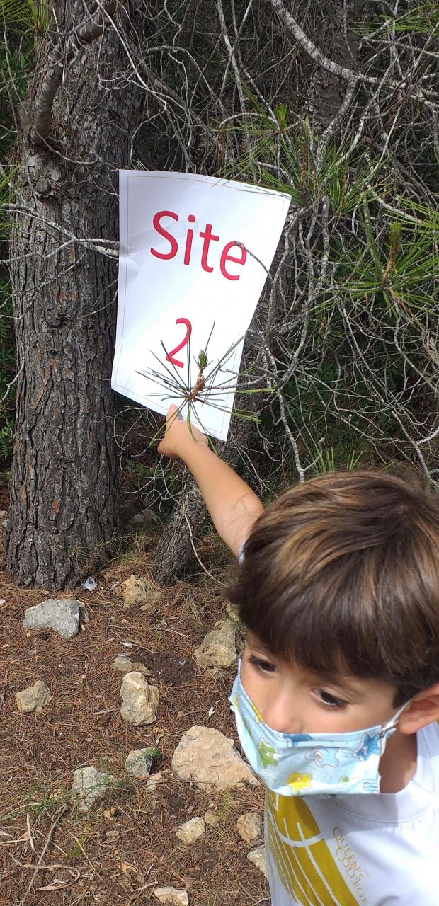 Forest visits pose questions, debate and reasons