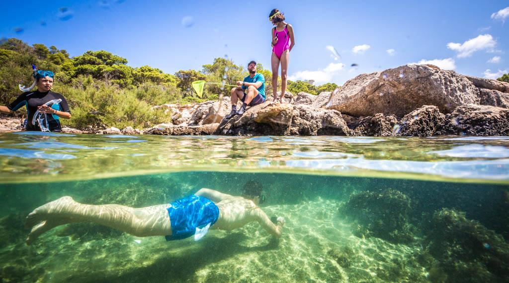 Discover Your Marine Protected Area Sa Dragonera