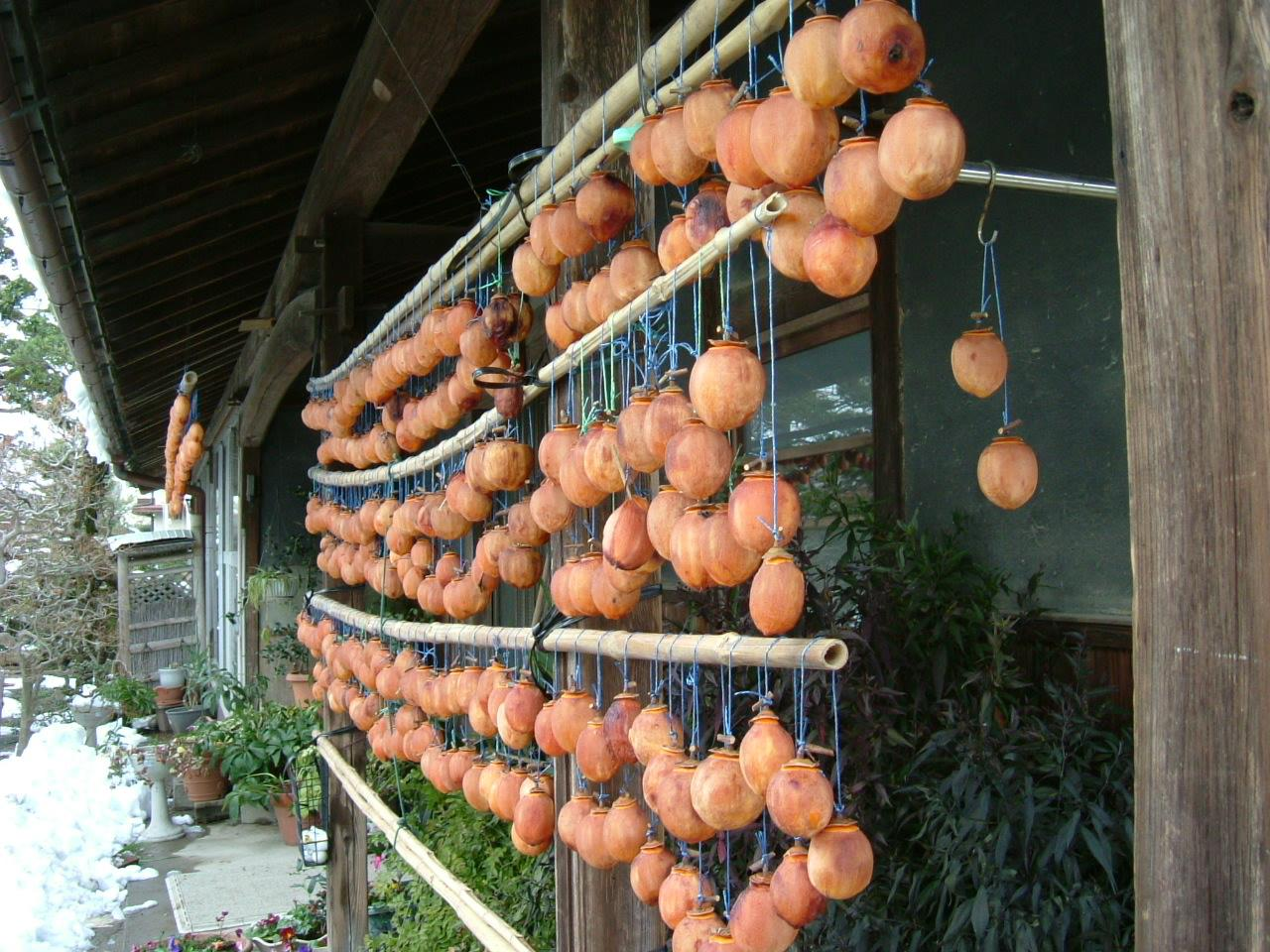 Dry Persimmons