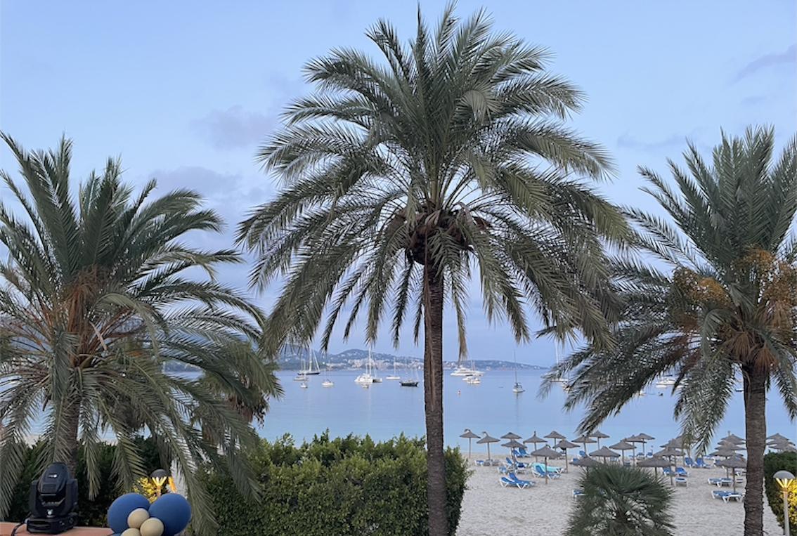 View from Origin terrace, Palmanova.