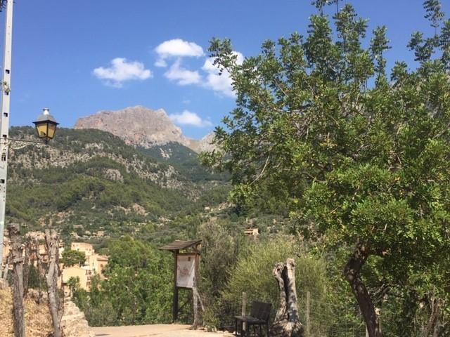 Life in the Soller Valley