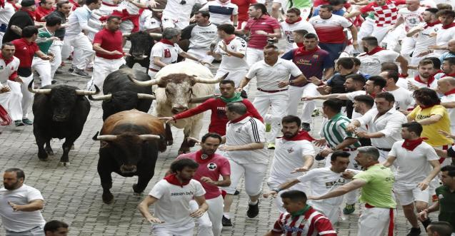 The bull run in Pamplona