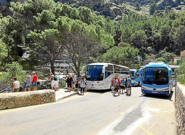 Tour buses with tourists