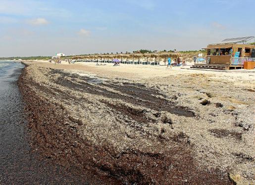 Es Trenc beach in Majorca