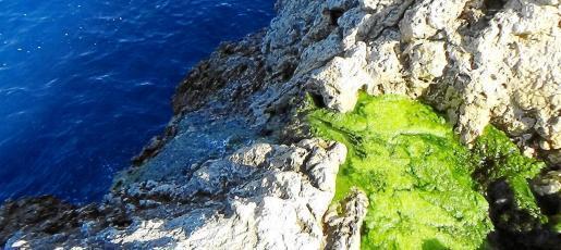 The rocks at Puerto Andratx