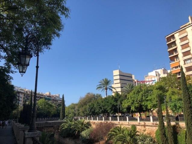 Sunny skies in Palma