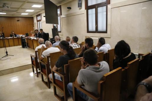 Los Lobatos in court