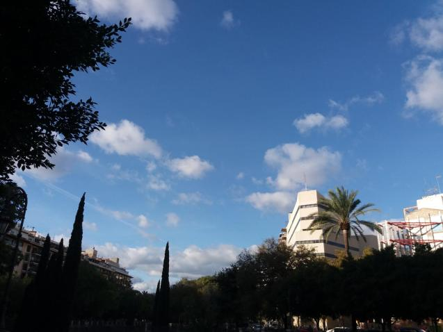 Weather in Palma today