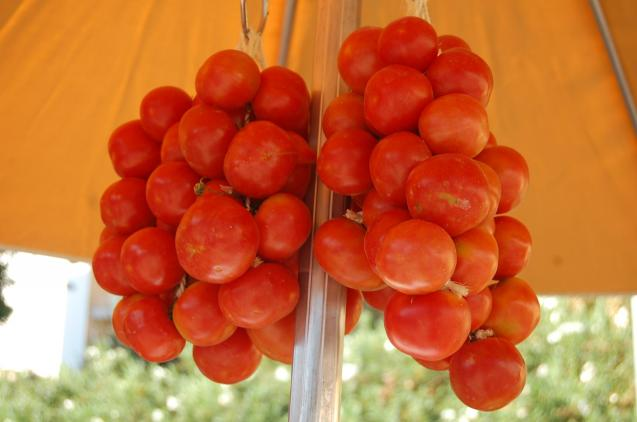 The Ramallet tomatoes.