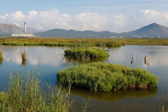 Albuferan wetlands nature reserve