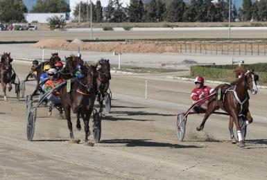 Trotting races at Son Pardo racetrack.