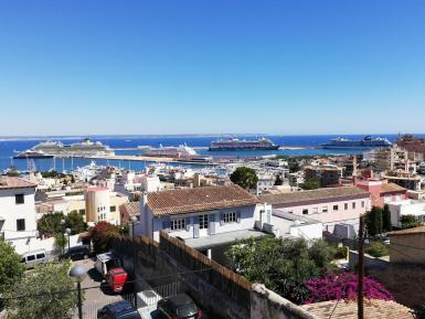 Palma port has reached full capacity in terms of cruise passengers and are looking to attract smaller ships and higher-spending visitors.
