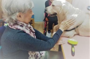 Golden Retriever named Samba with a resident of Calvia's senior citizens' home.