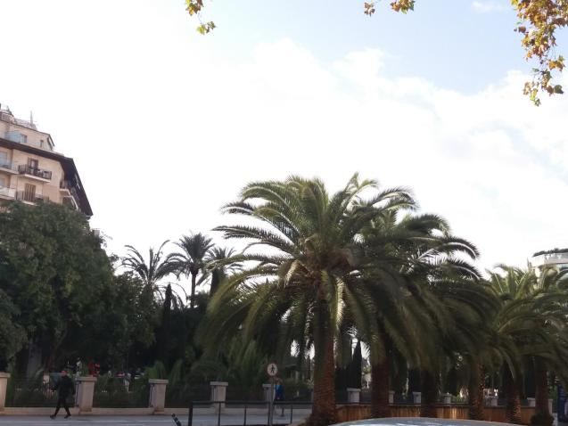 Sunny with a few clouds in Palma