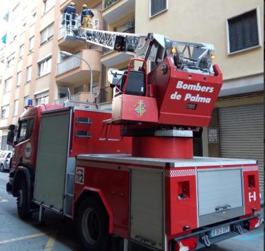 In order to meet the European ideal, Palma would need 260 more firefighters. Archive photo.